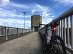 NEXT D55 Carbon Tubeless Road Disc Wheelset
